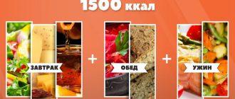 1500 ккал